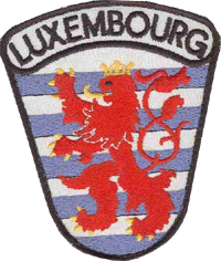 Insigne bras forces armées luxembourgeoises